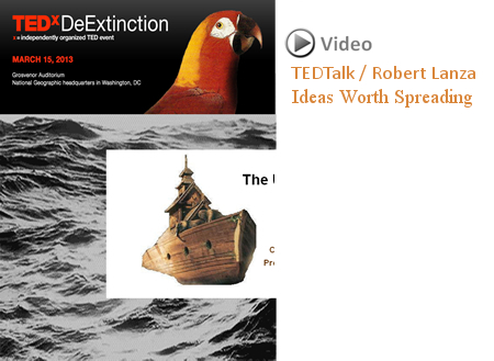 TEDx DeExtinction Graphic